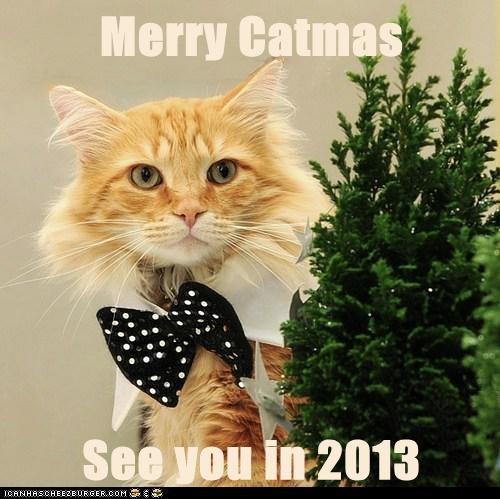 Merry Catmas  See you in 2013