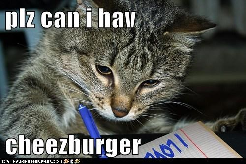 plz can i hav  cheezburger