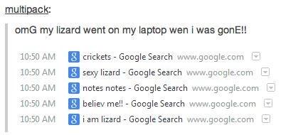 browser history,ruined,lizard,google