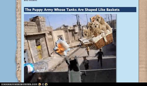 puppy tak
