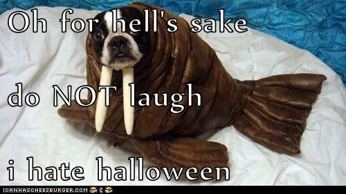 Oh for hell's sake do NOT laugh i hate halloween