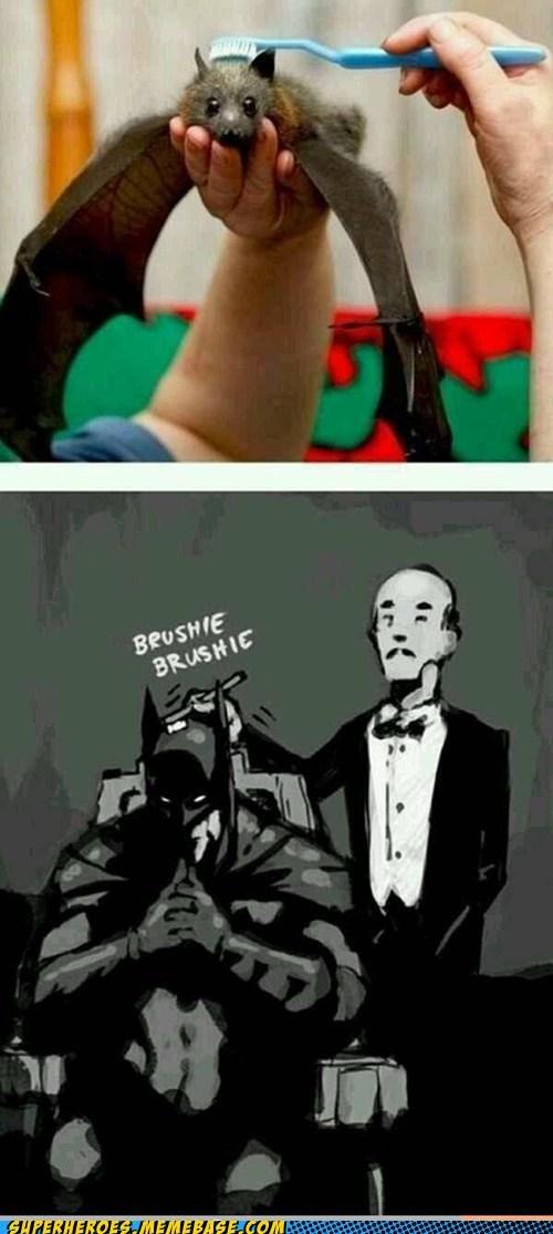 brush,alfred,batman,bat