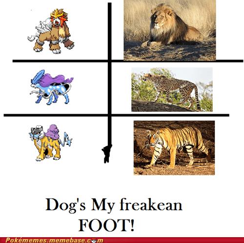 Legendary Cats
