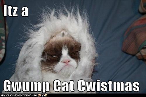 Itz a  Gwump Cat Cwistmas