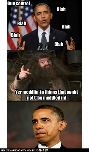 Obama Is Meddling