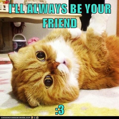 I'LL ALWAYS BE YOUR FRIEND  :3