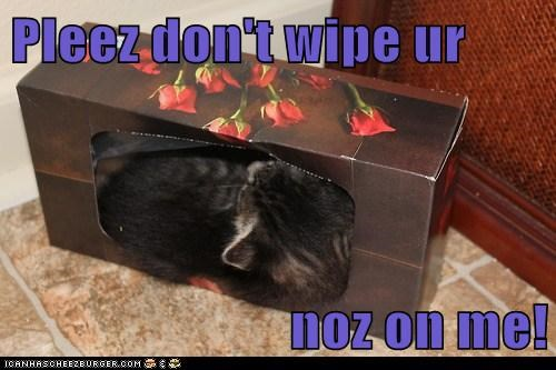 Pleez don't wipe ur  noz on me!