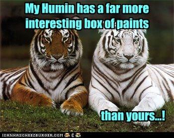 jealous,paints,tigers,colors,interesting,human