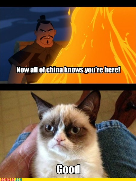mulan,disney,Movie,Grumpy Cat