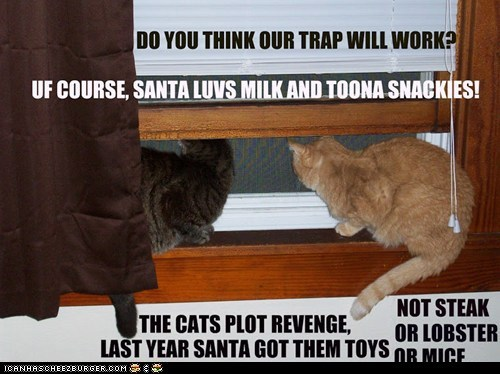 The kitties try to capture Santa.