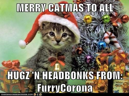 MERRY CATMAS TO ALL  HUGZ 'N HEADBONKS FROM: FurryCorona