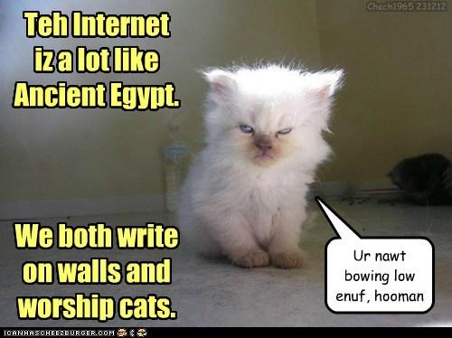 U shall haz no cat b4 meh