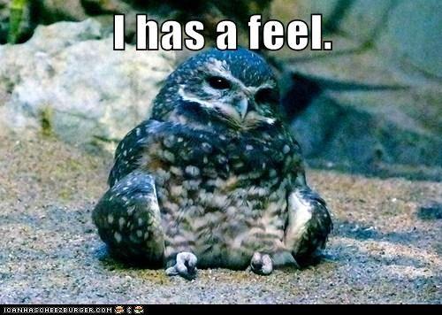 I has a feel.