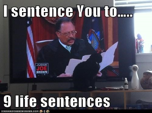 I sentence You to…..  9 life sentences