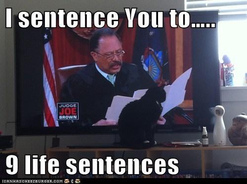 I sentence You to…..  9 life sentences