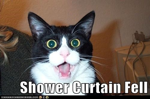 Shower Curtain Fell