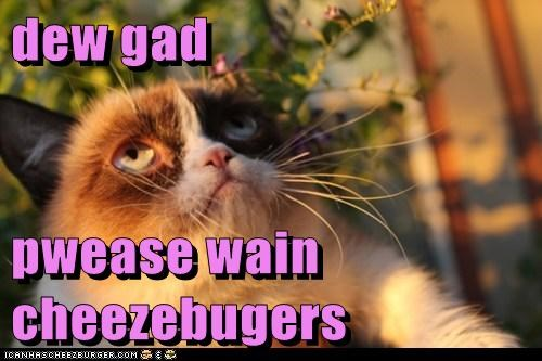 dew gad  pwease wain cheezebugers
