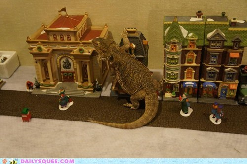 reader squee,pets,godzilla,bearded dragon,squee,holidays