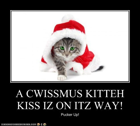 A CWISSMUS KITTEH KISS IZ ON ITZ WAY!