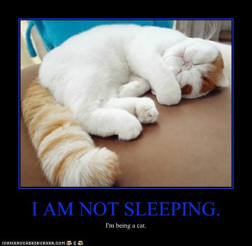 I AM NOT SLEEPING.