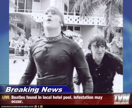 Breaking News - Beatles found in local hotel pool. Infestation may occur.