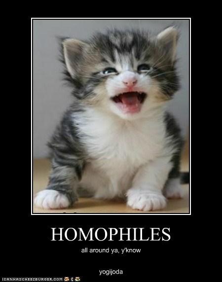 HOMOPHILES