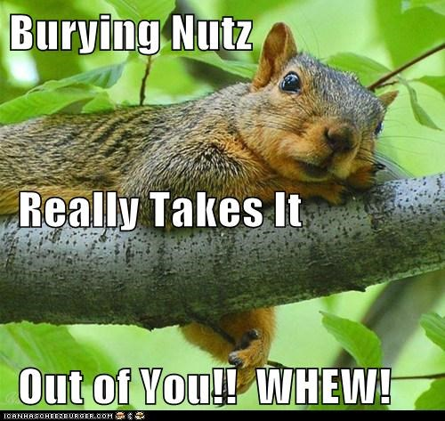 Burying Nutz  Really Takes It  Out of You!!  WHEW!