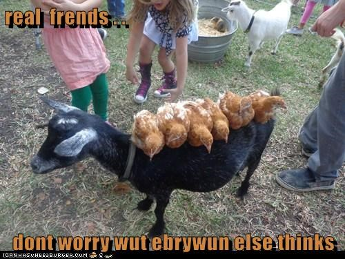 real  frends . .  dont worry wut ebrywun else thinks