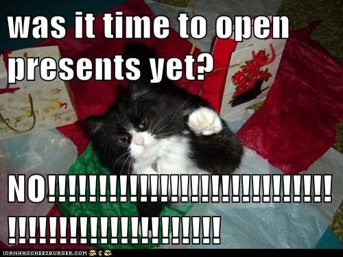 was it time to open presents yet?  NO!!!!!!!!!!!!!!!!!!!!!!!!!!!!!!!!!!!!!!!!!!!!!!!!!