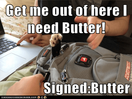 Get me out of here I need Butter!  Signed:Butter