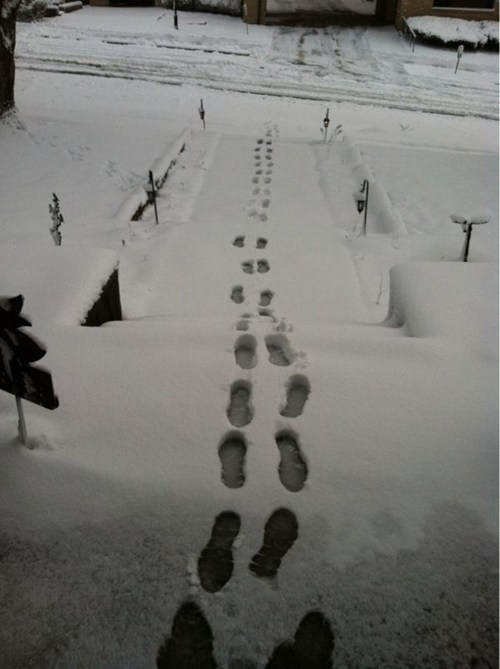 The Snow People Often Hide Their Tracks This Way...
