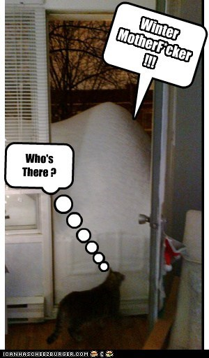 Knock Knock !