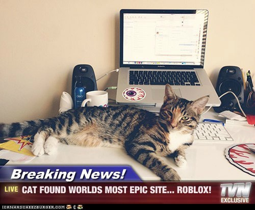 Breaking News! - CAT FOUND WORLDS MOST EPIC SITE... ROBLOX!