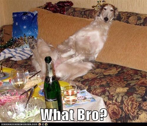 What Bro?