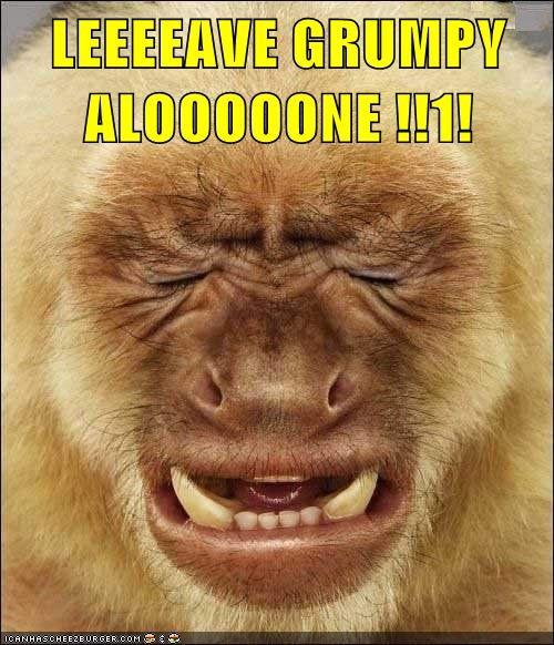 LEEEEAVE GRUMPY ALOOOOONE !!1!