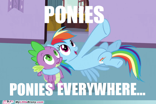 Ponies Everywhere....