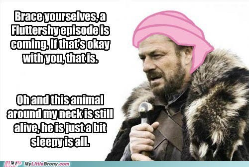 brace yourselves,fluttershy,animals