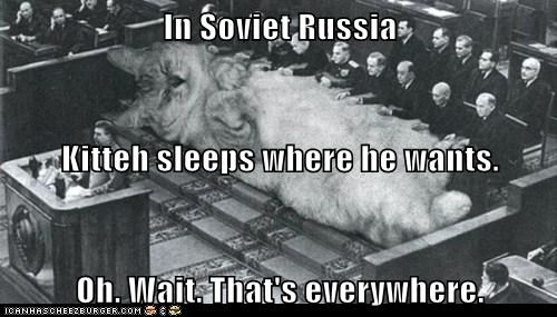 In Soviet Russia Kitteh sleeps where he wants. Oh. Wait. That's everywhere.