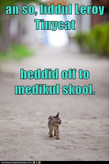 an so, liddul Leroy Tinycat heddid off to medikul skool.