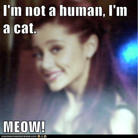 I'm not a human, I'm a cat.  MEOW!