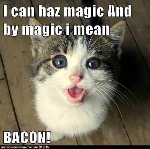 I can haz magic And by magic i mean  BACON!