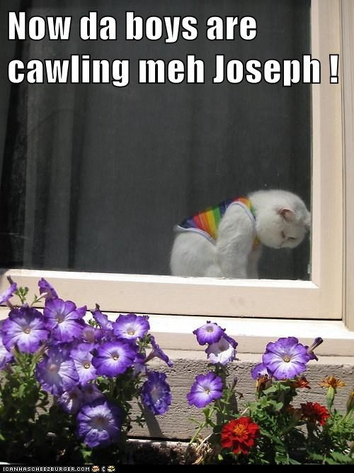 Now da boys are cawling meh Joseph !