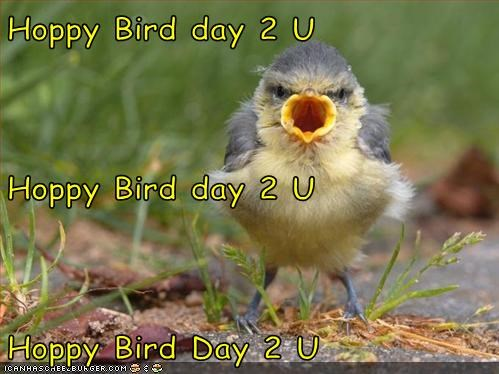Hoppy Bird day 2 U Hoppy Bird day 2 U Hoppy Bird Day 2 U