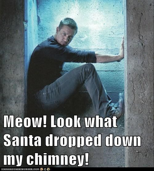 Meow! Look what Santa dropped down my chimney!