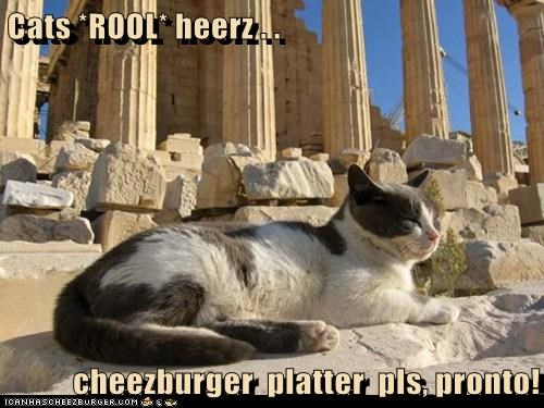 Cats *ROOL* heerz . .   cheezburger  platter  pls, pronto!