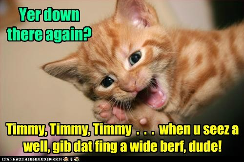 timmy,well,stuck,captions,TV,Cats,lassie