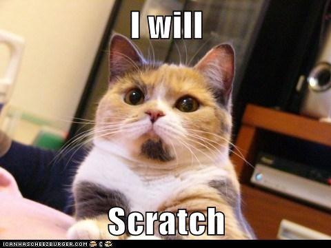I will  Scratch