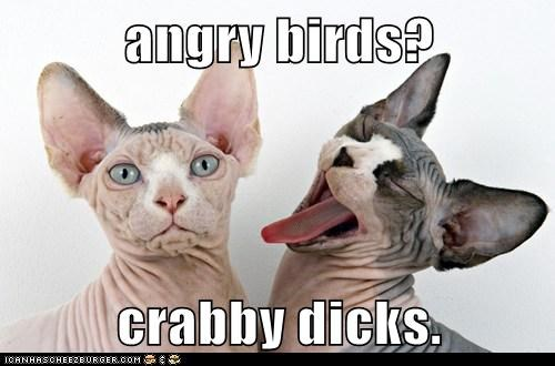 angry birds?  crabby dicks.