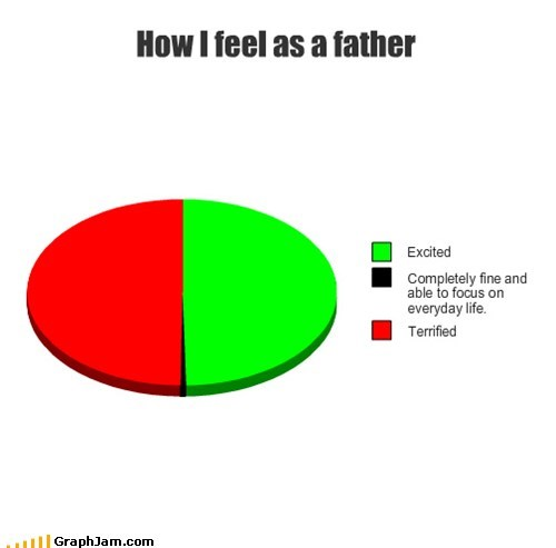 terrified,feel,excitement,Pie Chart,Father