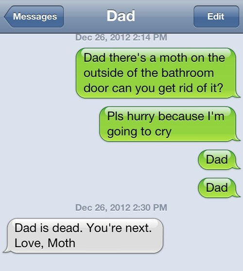 The Revenge of Moth